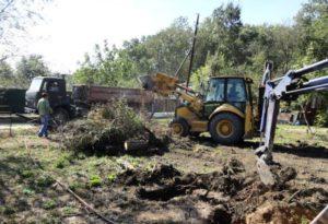 Расчистка участков от кустарников и деревьев