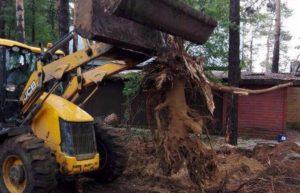 Удаление пня с помощью трактора