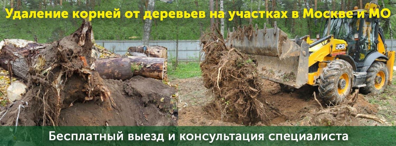 Удаление корней от деревьев