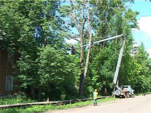 Удаление дерева в аварийном состоянии