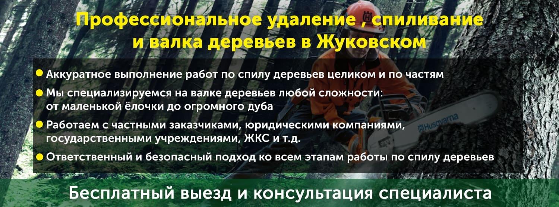 Услуги по спилу и валке деревьев в городе Жуковский