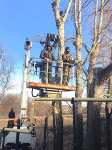 Спиливаем деревья в труднодоступных местах